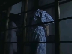 Japanese Nostalgic Porn #2